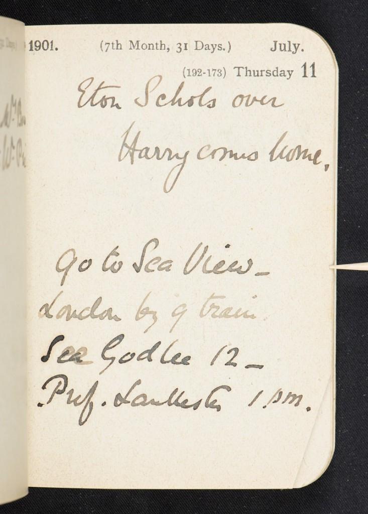 Diary Amabel 1901