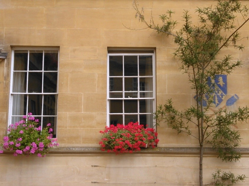 Window boxes in the Garden Quadrangle, photograph by Clare Hopkins.