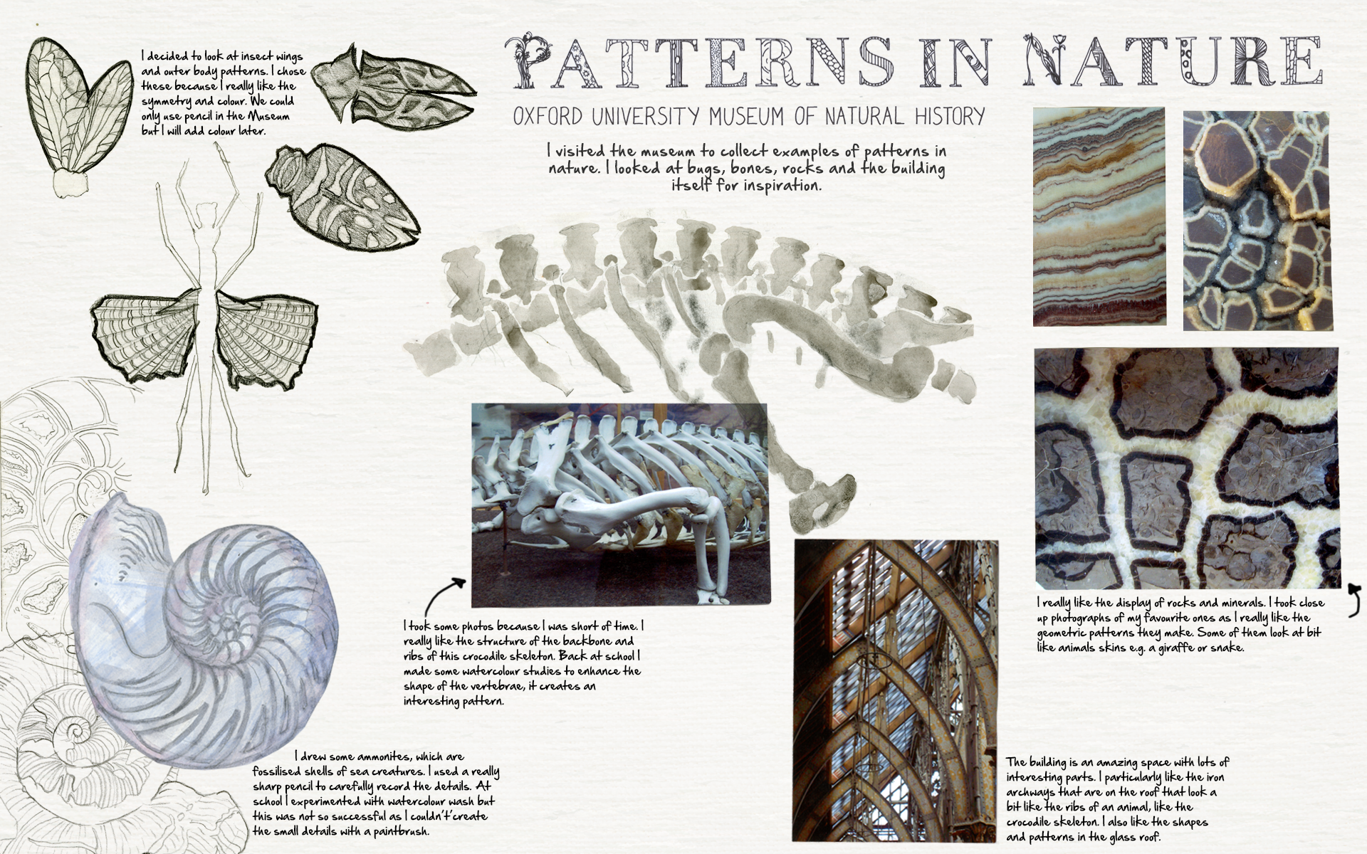 Patterns In Nature Oxford Sketchbooks Snake Skeleton Diagram Find The Incredible Https Designtrendscom Graphic Web Textures Bone Texturehtml