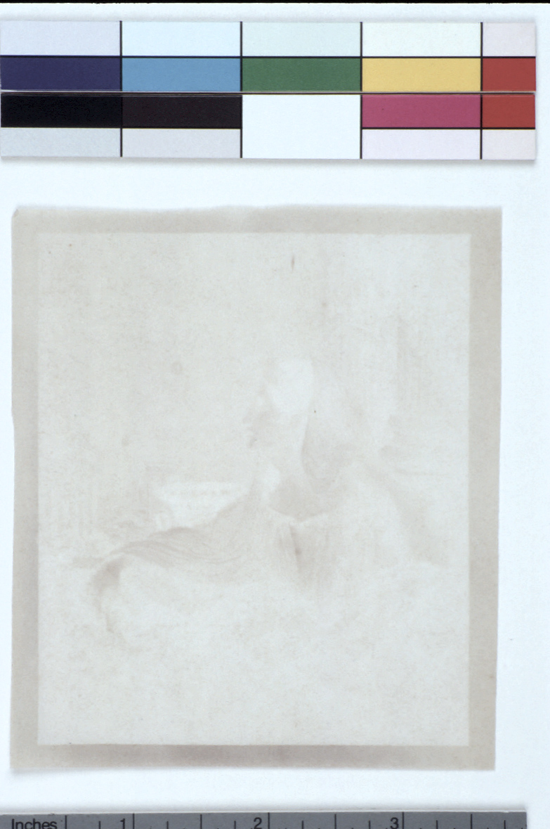 preview image for Photograph (Experimental Photogenic Drawing), by Sir John Herschel, 1839