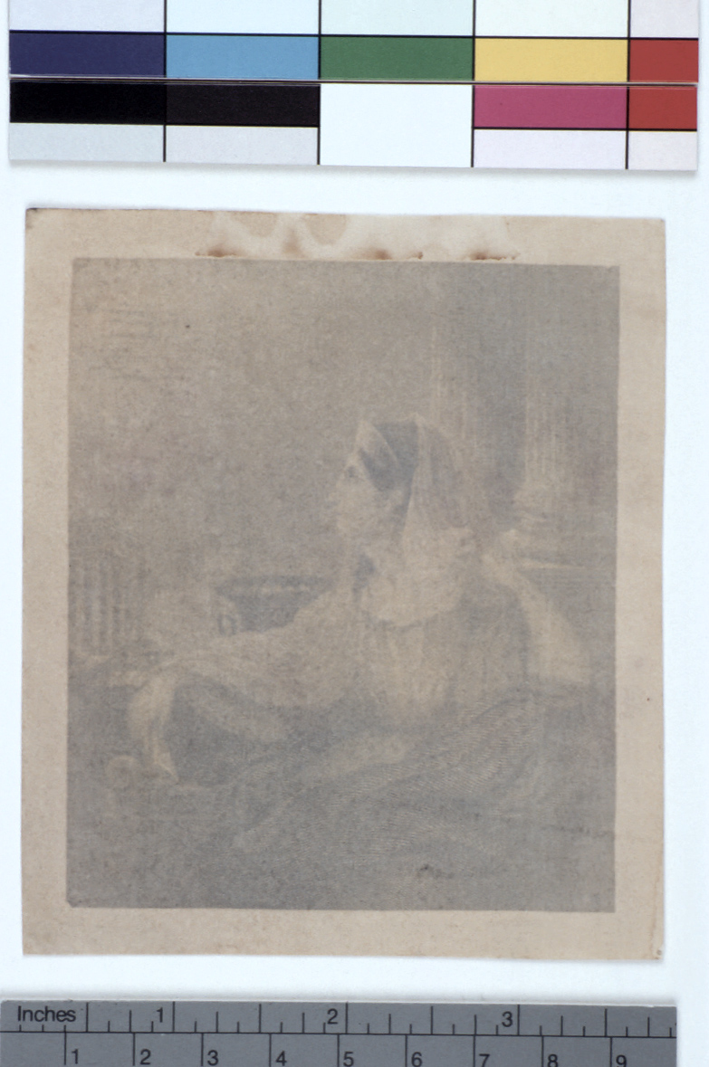 preview image for Photograph (Experimental Photogenic Drawing, Phytotype), by Sir John Herschel, c.1841