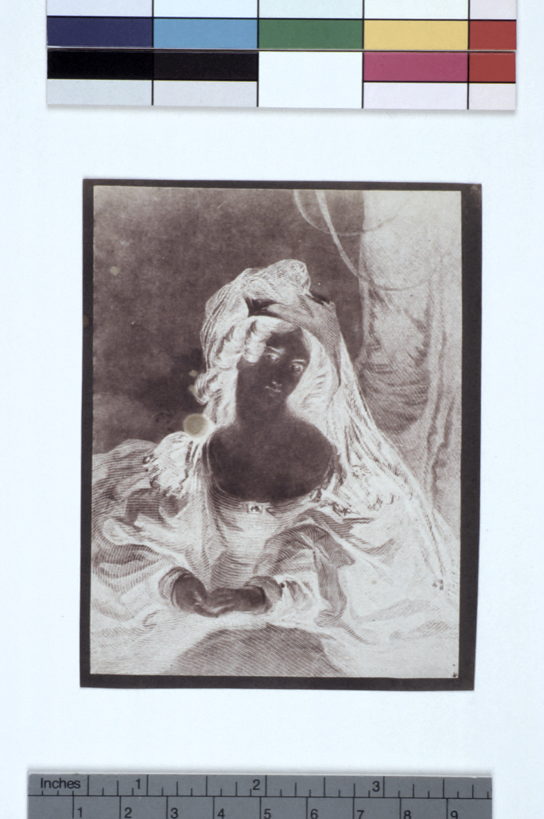 preview image for Photograph (Experimental Photogenic Drawing), by Sir John Herschel, August 5, 1839