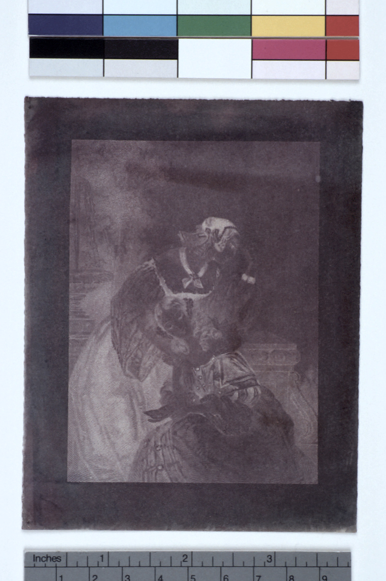 preview image for Photograph (Experimental Photogenic Drawing, Chrysotype), by Sir John Herschel, December 19, 1842