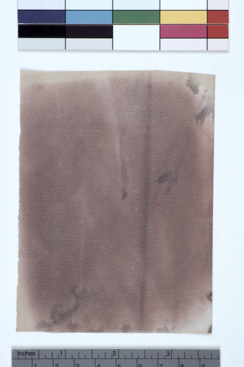 preview image for Photograph (Experimental Photogenic Drawing) of Lace, by Sir John Herschel, 1839