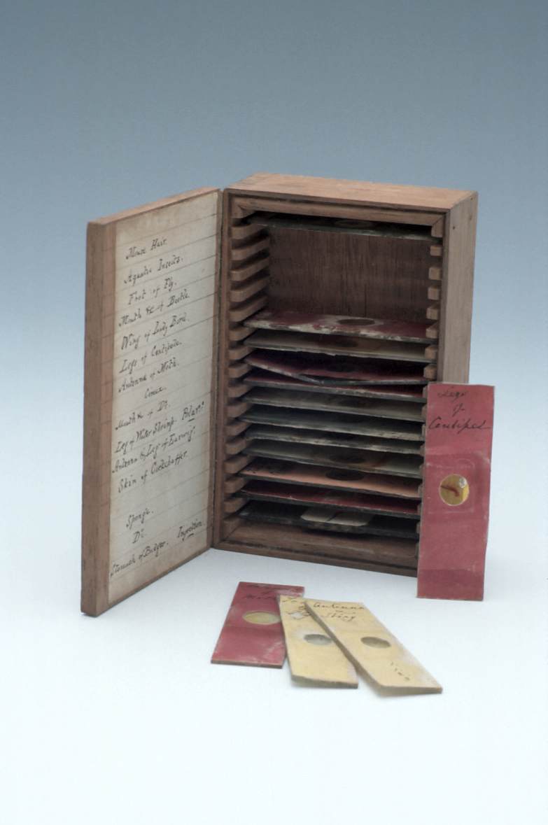 preview image for Box of Microscope Slides, English, Late 19th Century