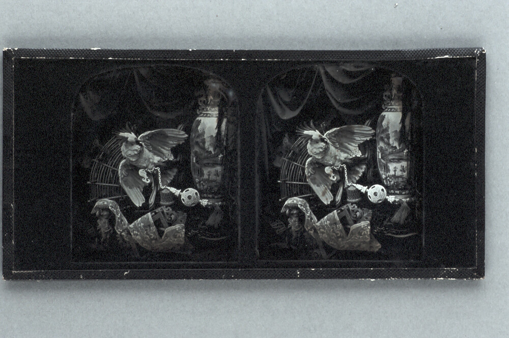 preview image for Stereoscopic Photograph (Daguerreotype) of a Still Life Arrangement Including a Parrot and a Tall Vase, by T. R. Williams, 1850s