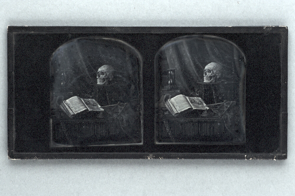 preview image for Stereoscopic Photograph (Daguerreotype) of a Still Life Arrangement with a Skull, by T. R. Williams, 1850s