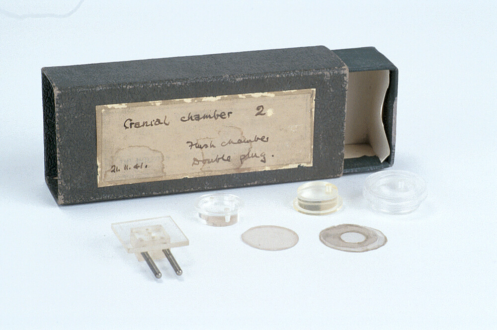 preview image for Cranial Chamber (Florey), Mid 20th Century