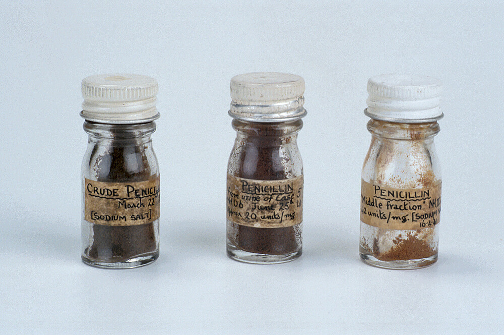 preview image for Penicillin Specimen