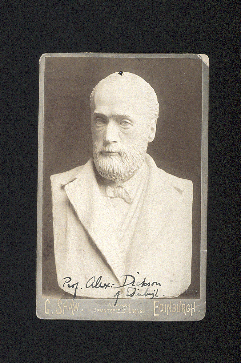 preview image for Photograph (Albumen Print, Cabinet Format) of a Bust of Alexander Dickson, by George Shaw, Edinburgh, c.1887