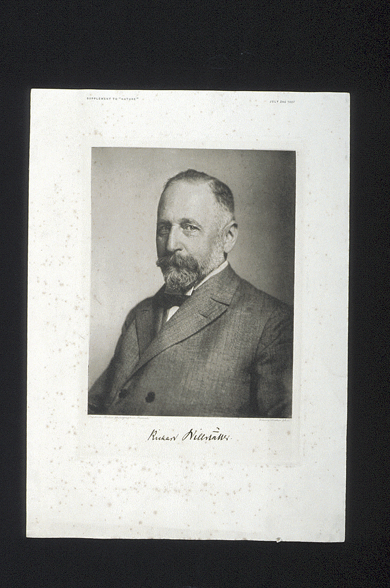 preview image for Print (Photogravure) Richard Willstatter, original photograph by Friedrich Müller, made by Emery Walker. Plate supplement to Nature, July 2nd, 1927