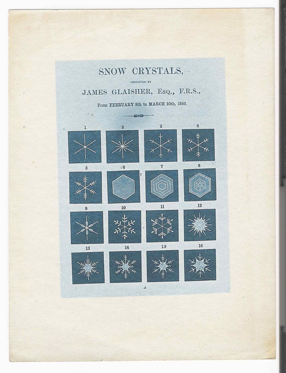 preview image for Photograph (Cyanotype) of Glaisher's Printed Sheet of 'Snow Crystals' (1855), by Washington Teasdale, Probably 1880s