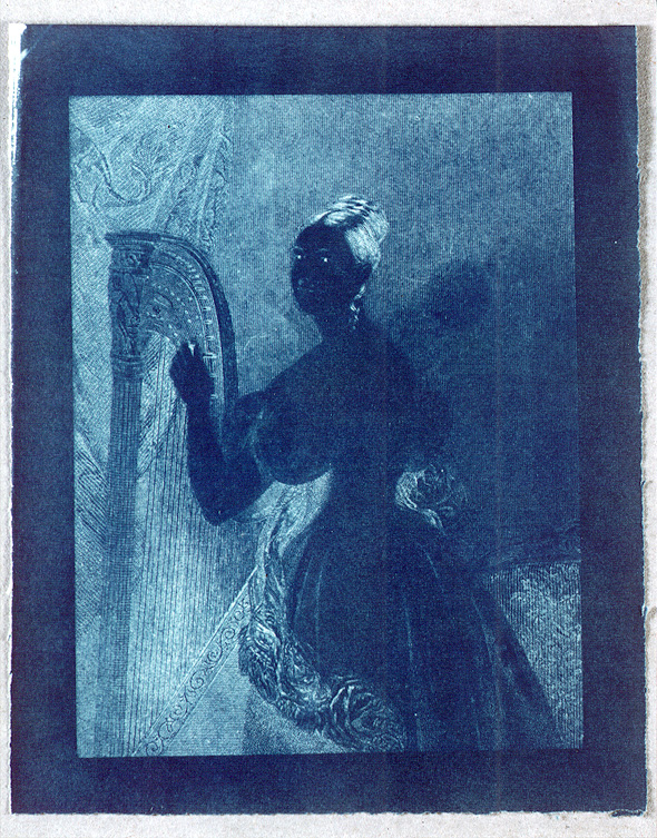 preview image for Photograph (Experimental Photogenic Drawing, Cyanotype), by Sir John Herschel, c.1842