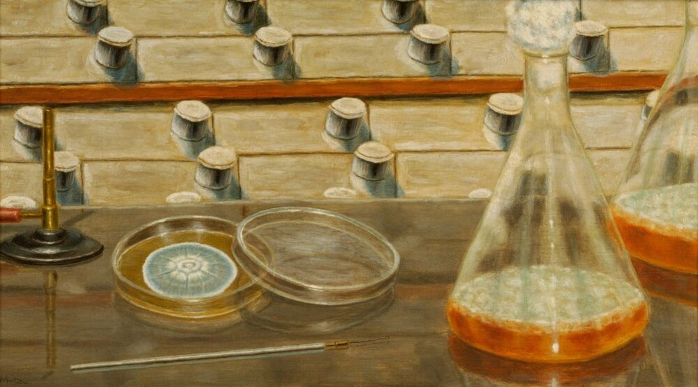 preview image for Painting (Oil on Canvas, Framed) of Early Penicillin Culture Vessels, by Harold Axtell, Mid 20th Century