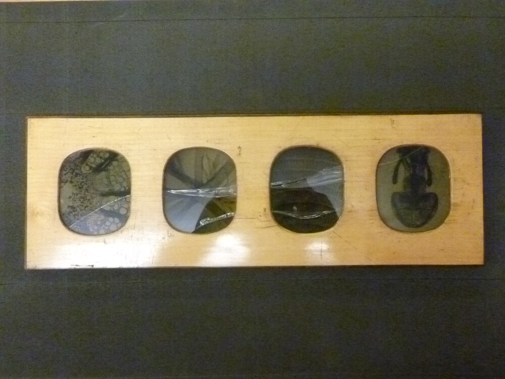 preview image for Frame of Four Photographs (Collodion Positives on Glass, Photomicrographs), by Joseph Delves, 1852