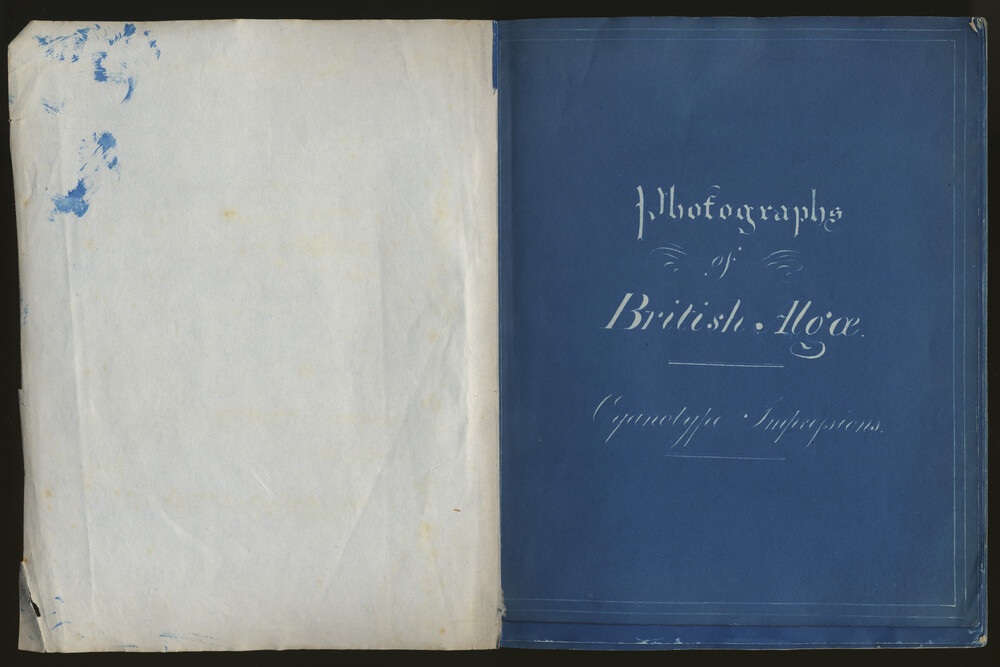 preview image for Cyanotype Herbarium, the First Fascicule of 'Photographs of British Algae', by Anna Atkins, 1843