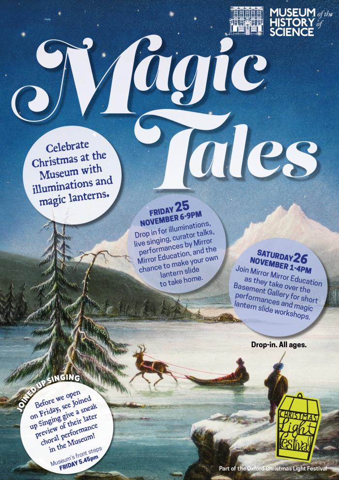 Christmas Light Festival Poster