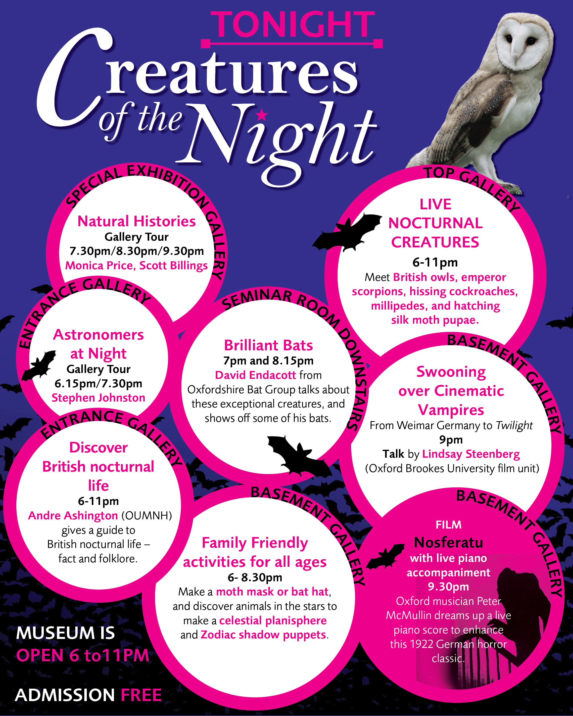 Museum at NIght: Creatures of the Night