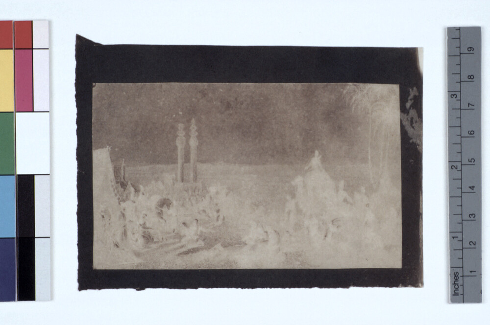 preview image for Photograph (Experimental Photogenic Drawing), by Sir John Herschel, June 21, 1839