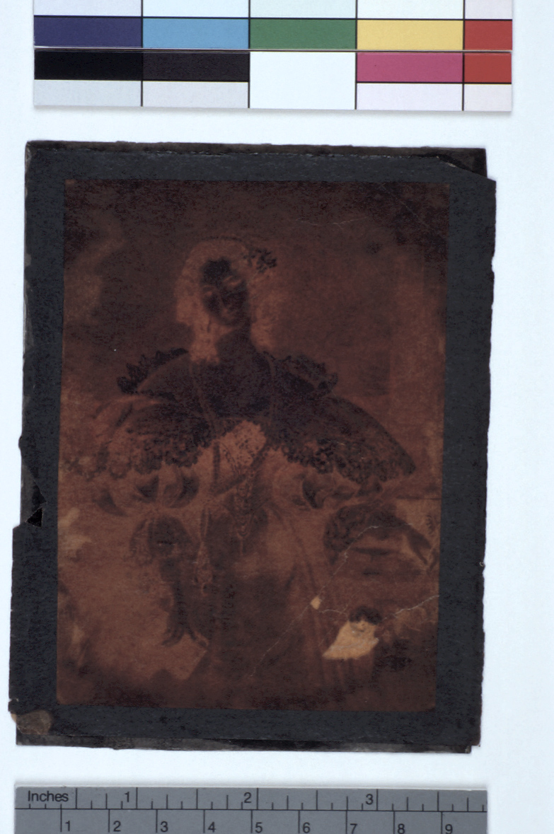 preview image for Photograph (Experimental Photogenic Drawing, Varnished Double Negative), by Sir John Herschel, 1839